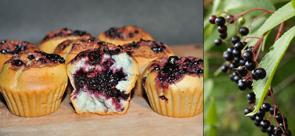 """Muffins leggeri """"cuore di Sambuco"""""""