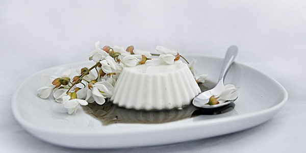 Budino di yogurt ai fiori di Robinia