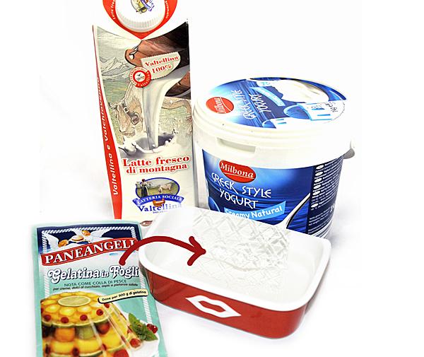 ingredienti budino di yogurt e robinia