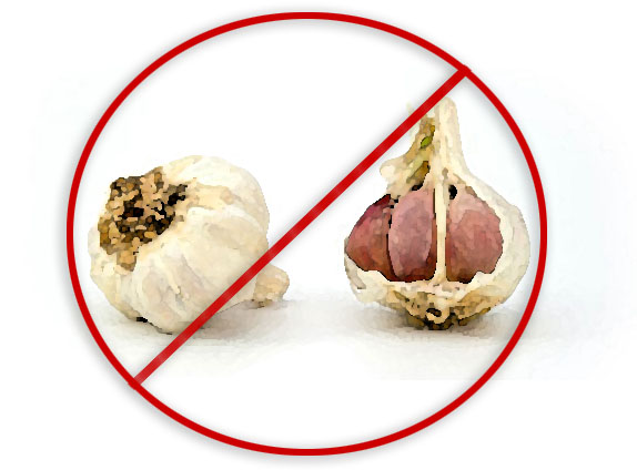 I am intolerant to garlic