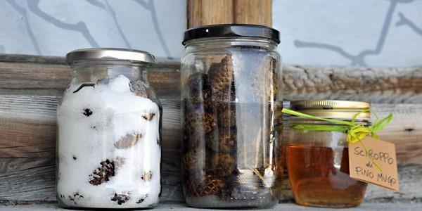 Dwarf mountain pine syrup