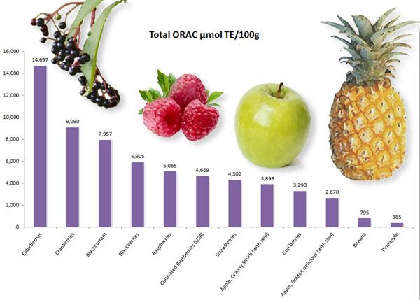 ORAC wild fruits