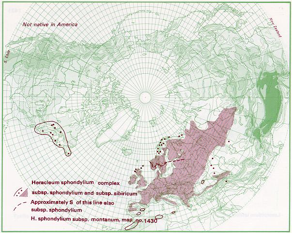 Heracleum sphondylium distribution