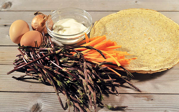 A few ingredients: hop shoots, carrot, onion, egg and soft & fresh cheese