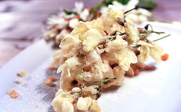 robinia flower fritters